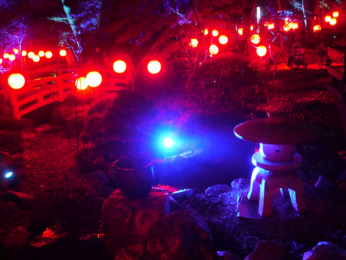 Slanted And Enchanted Lights At Descanso Gardens Imprint Lab